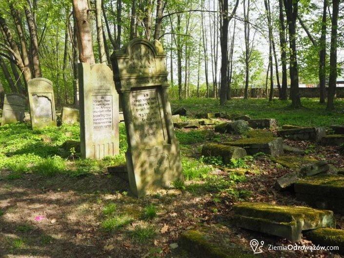 Nagrobki na cmentarzu żydowskim w Szydłowcu