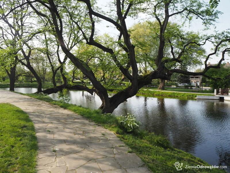 Park Zamkowy w Szydłowcu